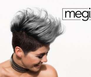 Megix